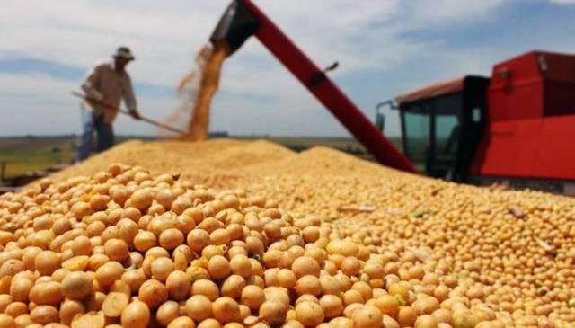 El Gobierno en busca de los dólares de la soja