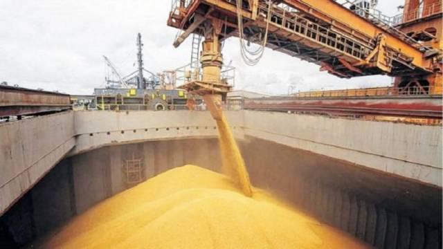 Segundo volumen exportado más alto de la historia del trigo
