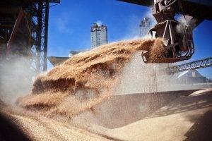 El mejor precio de los granos le dejará al Estado un aporte de 31.000 mill/dol