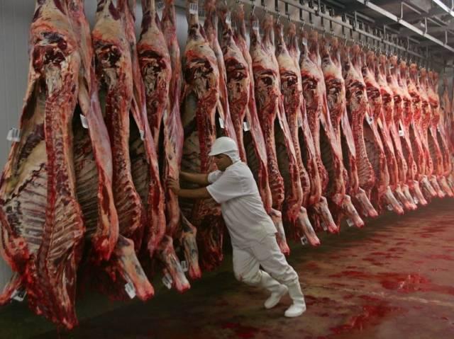 Récord en exportación de carne vacuna