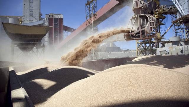 El complejo sojero exportó por US$ 1.872 millones en octubre tras la baja de retenciones