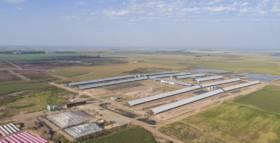 El gigante que sigue creciendo: ya tiene más de 11 mil vacas en ordeñe