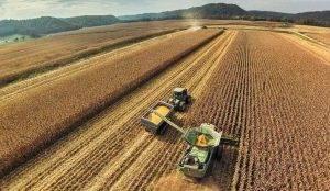 Los 4 puntos claves que discuten campo y Gobierno sobre la Ley agroindustrial