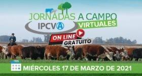 Guaminí, en el oeste bonaerense, será sede de la segunda jornada virtual del IPCVA