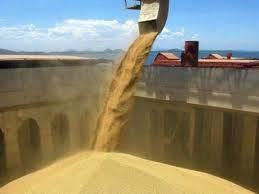 La cadena agroindustrial continúa siendo la principal generadora de divisas para el país