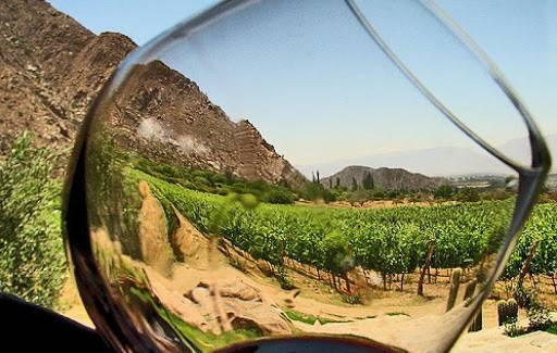 Al vino tinto le acecha una realidad negra