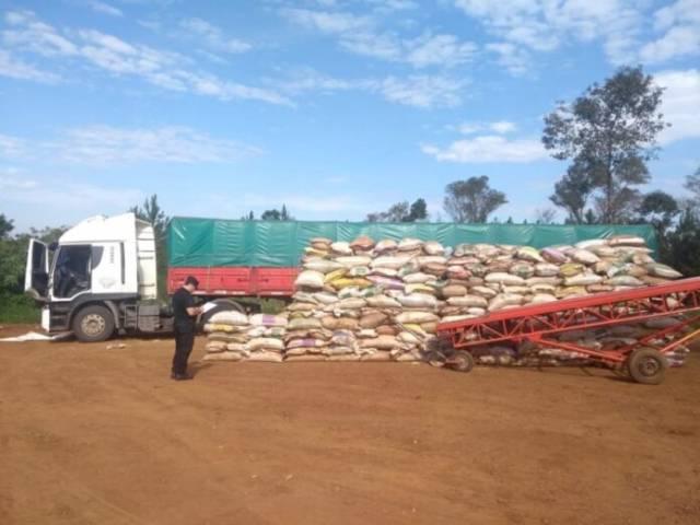 Contrabando de soja a Brasil y Paraguay